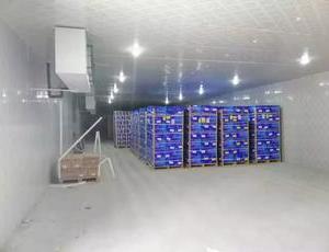 大型冷库回收