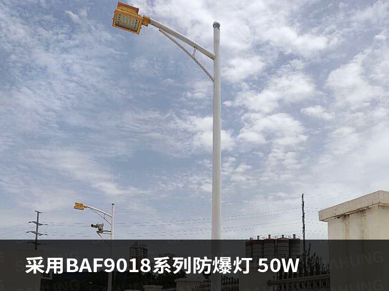 BAF9018.jpg