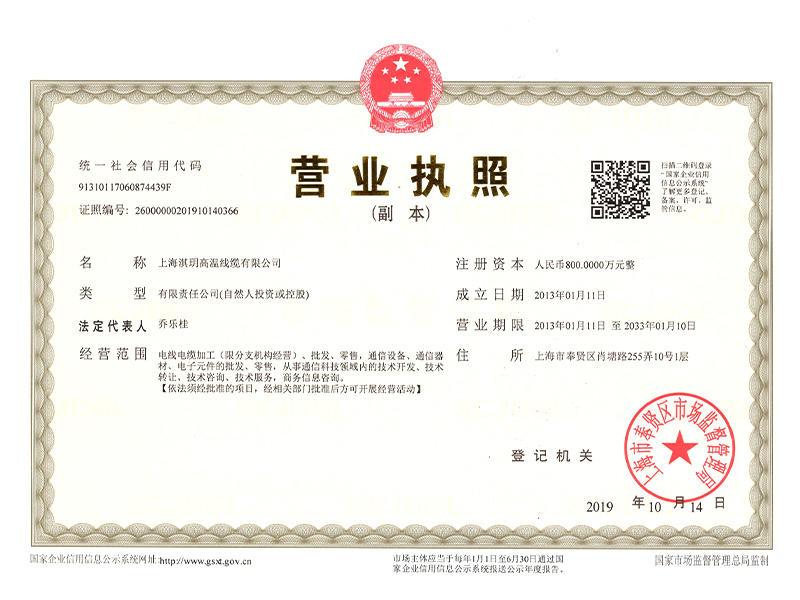 上海淇玥营业执照.jpg