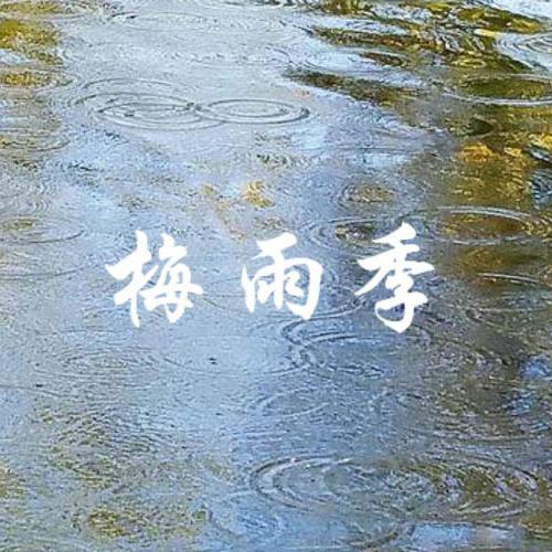 梅雨季来了,水产养殖挑战不断,不做到这些如何扛得过去!