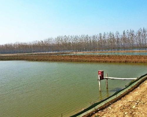 持续高温天气,水产养殖面临挑战,这5项工作必须做!