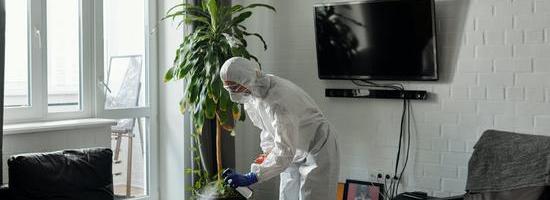 日常清潔消毒必不可少!泰緣云保消毒粉怎么用?正確打開方式在這里