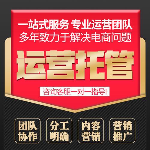 杭州网店代运营-山东农妇大山里开淘宝店,留守农村15年成全国劳模