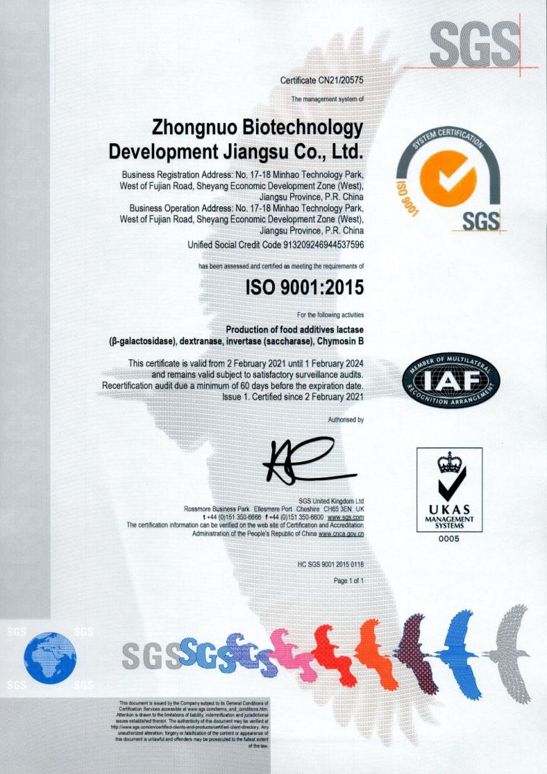 ISO 9001 EN.png
