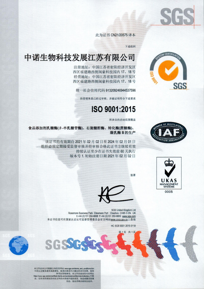 ISO 9001 CN.png